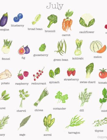 Fruit and Vegetables in Season in July
